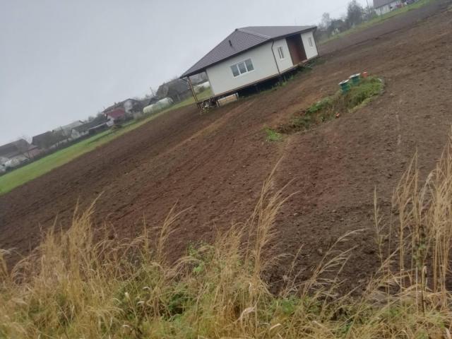 Выравнивание земельных участков. Ландшафтный дизайн газон